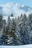 Winter berglandschap (Oostenrijk, Beieren). — Stockfoto