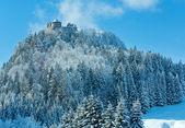 Zimní pohled pod hradem Ehrenberg (Rakousko, Bavorsko). — Stock fotografie