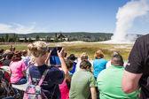 Old faithful geyser in Yellowstone  — Stock Photo