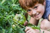 Junge gärtner — Stockfoto