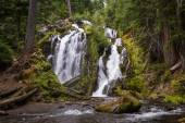 National creek falls, Oregon — Stock Photo