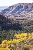 Autumn in southern Utah  — Stockfoto