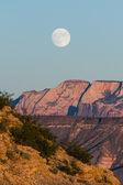 满月上升 — 图库照片