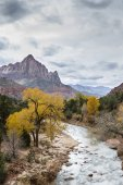 The Watchman in Zion NP — Stock Photo