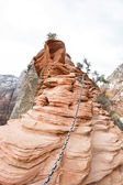 Angels Landing train in Zion NP — Stock Photo