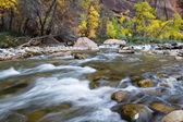 Autumn on the virgin river — ストック写真