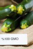 Fresh GMO zucchini  — Stock Photo