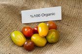 Biologische tomaten — Stockfoto