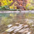 Autumn in Zion NP — Stock Photo #67843423