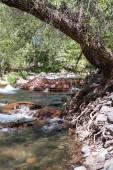 Pristine river — Stock Photo