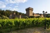 Wine castle in Napa Valley — Stock Photo