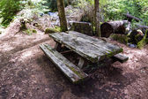 Old picnic bench — Stock Photo