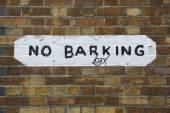 No barking — Stock Photo
