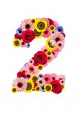 Number Two 2, flower alphabet isolated on white. — Stock Photo
