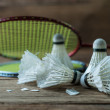 Set of badminton. Paddle and the shuttlecock — Stock Photo #60123065