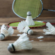 Set of badminton. Paddle and the shuttlecock — Stock Photo #60129507