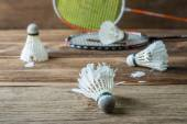 Set of badminton. Paddle and the shuttlecock — Zdjęcie stockowe