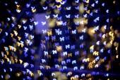 Multicolour bokeh Butterfly shape — Stock Photo