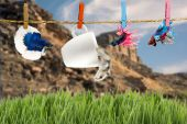 Betta and Hamster hanging on the clothesline — Foto de Stock