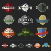 Set of Retro Vintage Badges and Labels ,Set2 — Stock Vector