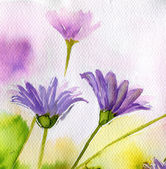 Watercolor illustration depicting spring flowers in the meadow — Stock Photo