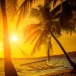 Hammock silhouette with palm trees on a beautiful at sunset — Stock Photo #51895881