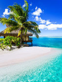 Tropical villa and palm tree next to blue lagoon — Foto Stock
