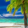 Empty hammock between palm trees on tropical beach of Rarotonga — Stock Photo #70536757