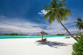 Deck chairs under palm trees on a tropical beach of Maldives — Stock Photo