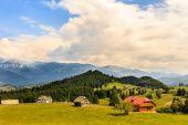 山の中の美しい夏の風景です。ルーマニア — ストック写真