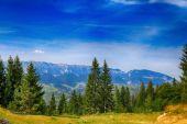 Paysage d'été magnifique dans les montagnes. roumanie — Photo