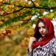 Young brunette woman portrait in autumn color — Stock Photo #56136679