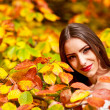 Young brunette woman portrait in autumn color — Stock Photo #56136741