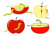 Apple Slices and Pieces with Worm — Stockvektor