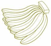 Bunch of Bananas Drawing — Stock Vector