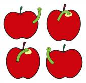 Apples with Worm Insect — Stock Vector