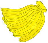 Dozen Bananas — Stock Vector