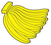 Bunch of Bananas Vector Illustration — Stock Vector