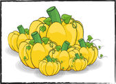 Pumpkins Vector Collection — Stock Vector