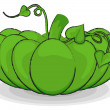 Green Pumpkin Vegetable — Stock Vector #57382721