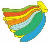 Colorful Bananas Bunch — Stock Vector