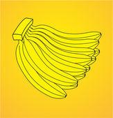 Bunch of Bananas Isolated — Stock Vector