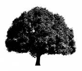 Urban Halloween Tree — Stock Vector