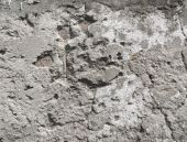 Decayed Cemented Surface Texture — Stock Photo