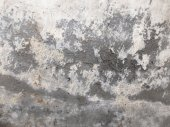 Decayed Wall Texture — Stock Photo