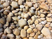 Sleek Pebbles Texture — Stock Photo