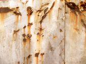 Scruffy Metal Sheet Texture — Stock Photo