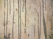 Grunge Cemented Wall Texture — Stock Photo