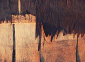 Rugged Wood Texture — Foto de Stock