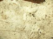 Dirty Cemented Texture Background — Stock Photo
